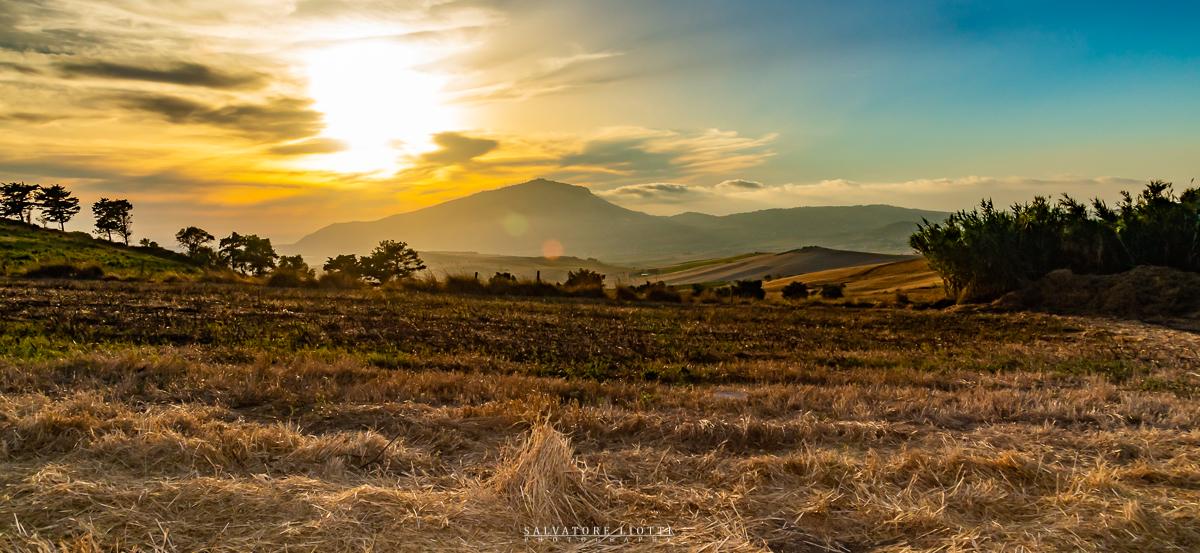 panorama estivo con campi coltivati