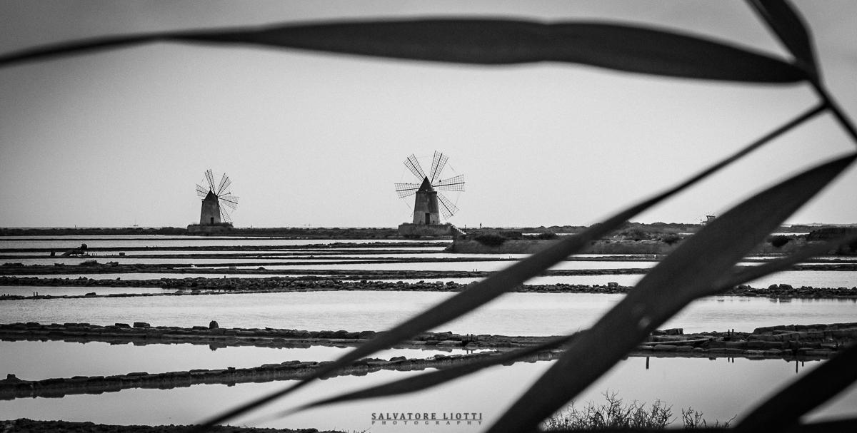 panorama siciliano con mulini a vento e saline